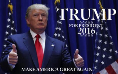Trump is exactly what America needs