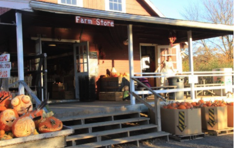 What's Hot in Princeton- Terhune Orchards