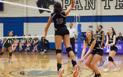 PDS Volleyball Season Review