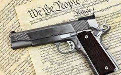 Banning Guns: Is It Worth It?