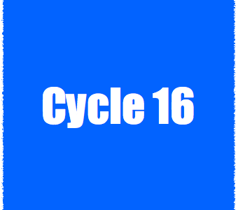 Whats Up With Council: Cycle 16